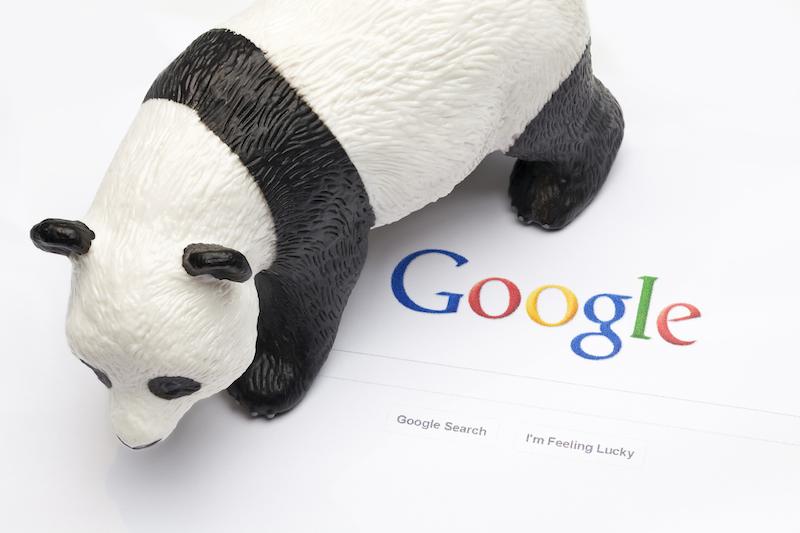 گوگل در حال آپدیت الگوریتم پانداست